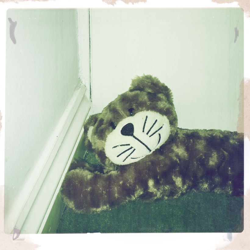headercalcat